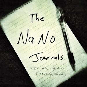 The NaNo Journals