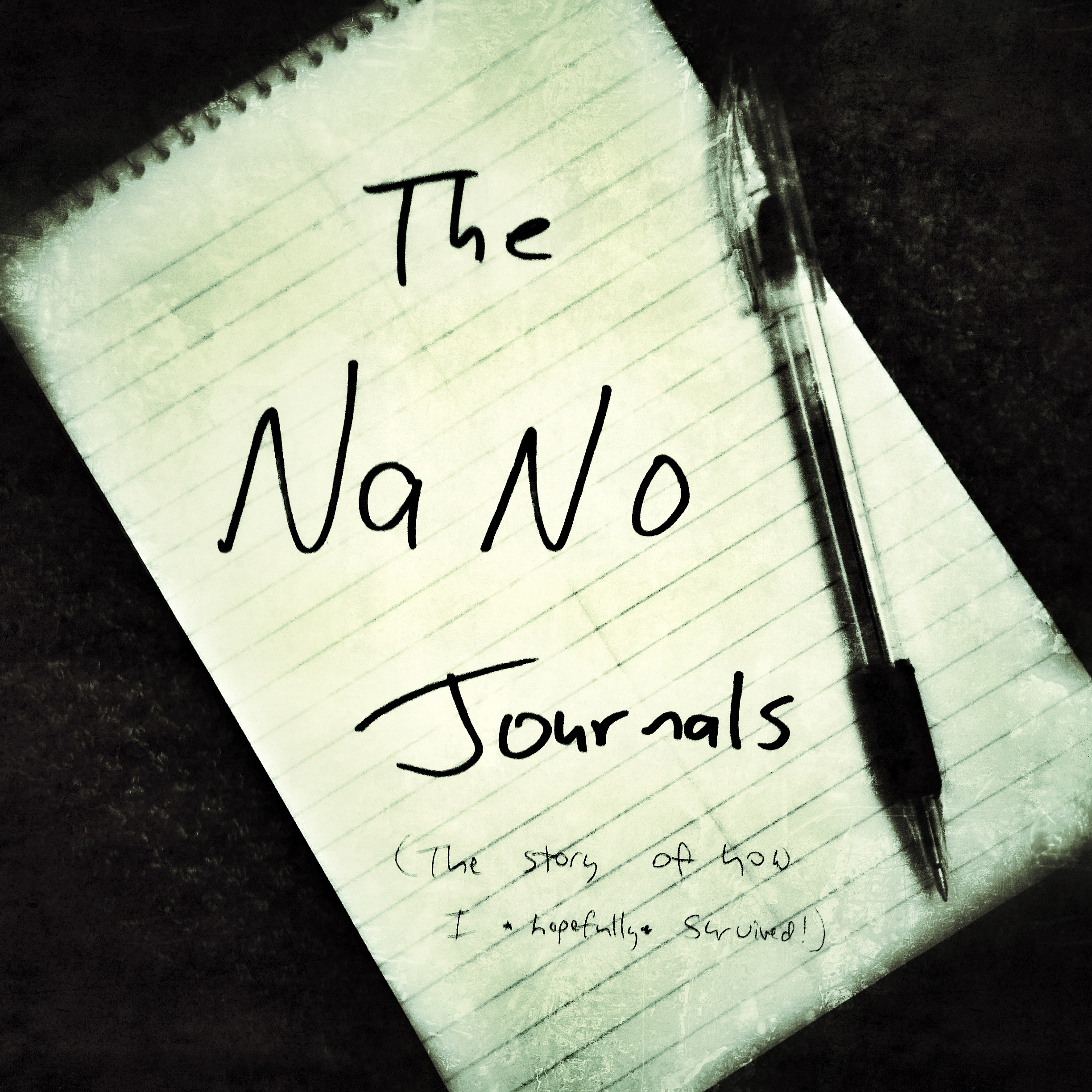 NaNo Journals Week 1:  Hitting the 10,000 Word Mark